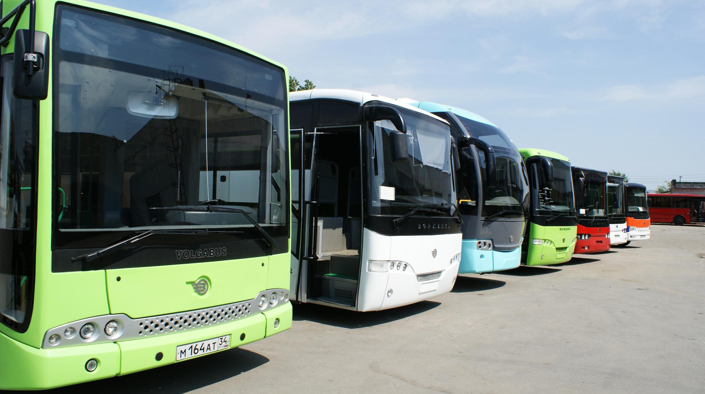 женские автопарк автобусов картинки натюрморт дерево ракушки