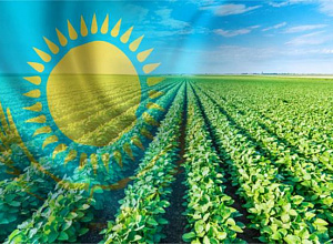 $1.5 bln annually loses Kazakhstan from export of agricultural raw materials - research